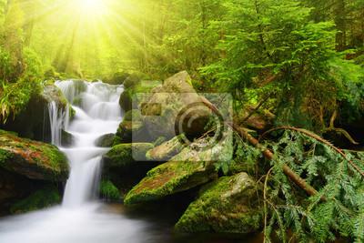 Wodospad w parku narodowym Sumava-Czechy