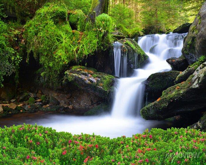 Obraz Wodospad w parku narodowym Sumava-Czechy