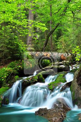 Wodospad w parku narodowym Sumava-Czeski Republice