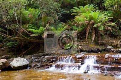 Wodospad w Rainforest