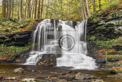 Wodospad w suchym biegu - Loyalsock State Forest, Pennsylvania