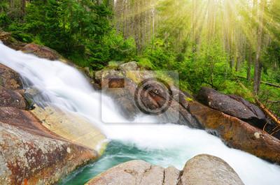 Wodospady w strumieniu Studeny potok w Wysokie Tatry, Karpaty Zachodnie, Słowacja