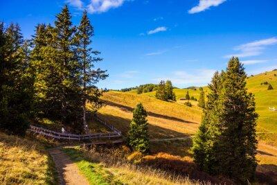 Wonderful quiet mountain valley