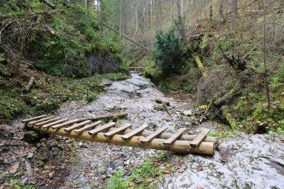 wooden bridge over brook in mountain gorge