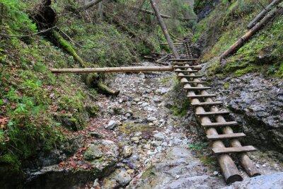 wooden bridges in mountain gorge