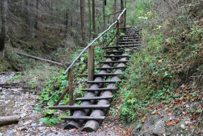 wooden stairs in mountain gorge