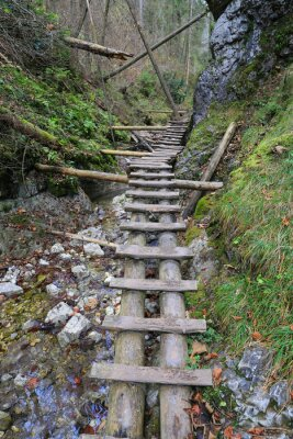wooden stairs way over brook in mountain gorge,