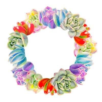 Wreath from colorful succulents.  Decorative plants. Floral print. Marker drawing. Watercolor painting. Beautiful houseplants. Greeting card. Flower painted background. Hand drawn illustration.