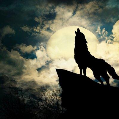 Obraz wycie wilka w sylwetce do pełni księżyca
