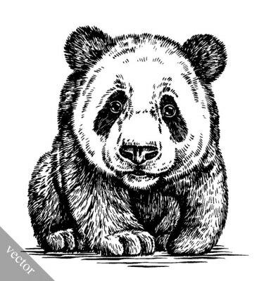 Obraz wygrawerować atramentu rysować rysunek panda