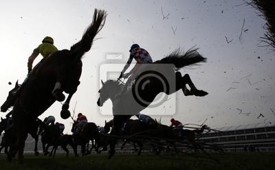 Obraz Wyścigi konne skoki płot