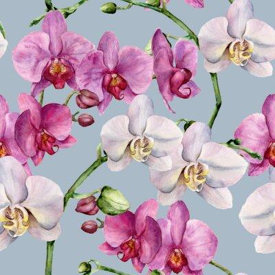 Obraz Wzór akwarela z białego i różowego orchidee. R? Cznie malowane kwiatów botaniczne ozdoba. Do projektowania, tkanin lub drukowania.