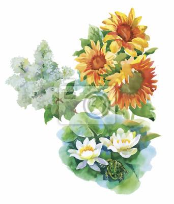 Wzór z żółtych słoneczników malowane akwarelą na białym