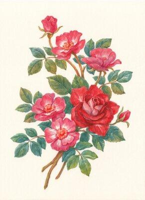 Obraz Букет с цветами шиповника, акварель.