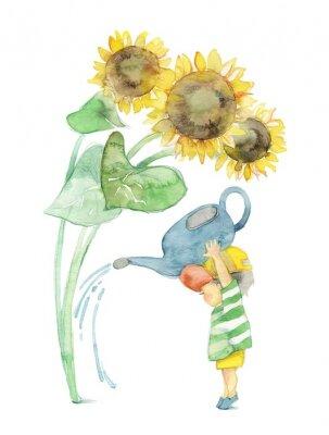 Obraz 向日葵 と 男 の 子