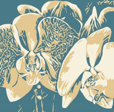 Obraz Рисунок орхидеи