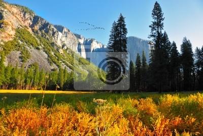 Yosemite Park, powyżej którego lotu ptaka leci