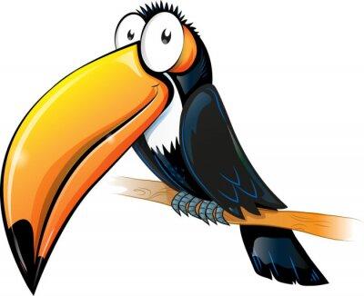 Obraz zabawy tukan cartoon samodzielnie na białym tle.