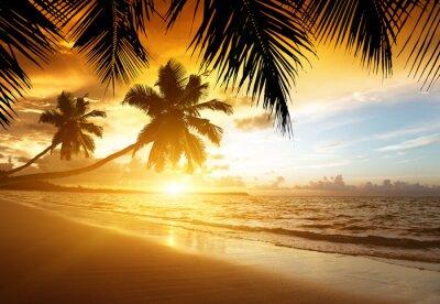 Obraz Zachód słońca na plaży w Morzu Karaibskim