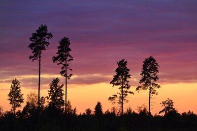 Obraz Zachód słońca na wsi