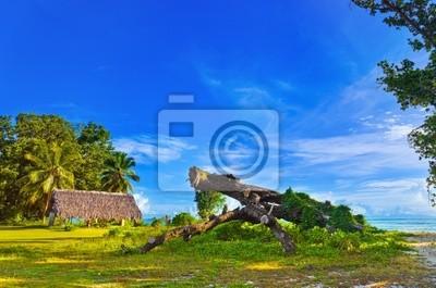 Zadaszenie i drzewa na tropikalnej plaży