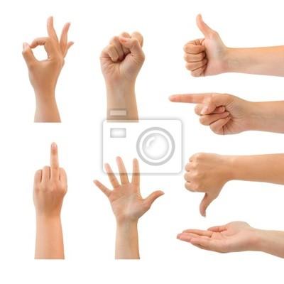 Zestaw gestem dłoni