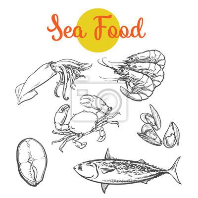 Obraz Zestaw produktów morskich od morza, Wektor zestaw szkic rysowane ręcznie elementy, ryby morskie, kraby, krewetki, stek ryb, Colmar, małże wyizolowanych na białym tle żywności wyboru koloru świeżych ow