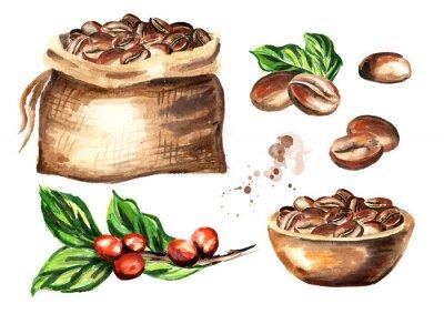 Obraz Zestaw ziaren kawy. Dłoń akwarela ilustracja na białym tle