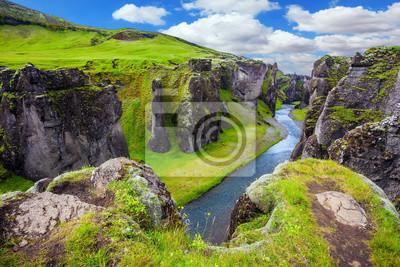 Zielona Tundra w lecie
