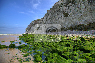 Zielone skały na wybrzeżu morza niedaleko Wissant w Nord-Pas-de-Calais