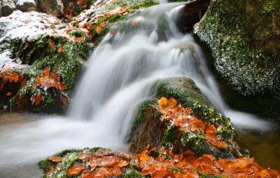 Zima Creek w Parku Narodowym Szumawa, Czechy.