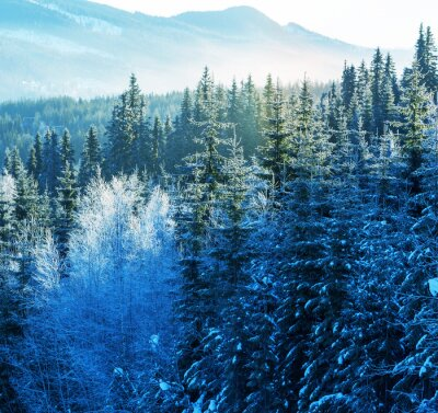 Obraz Zima góry