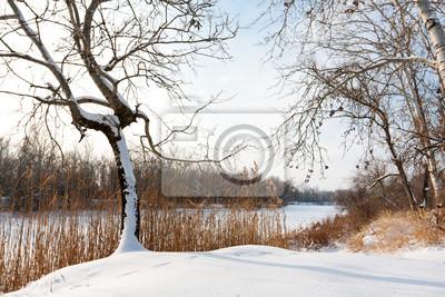 Zimowe sceny