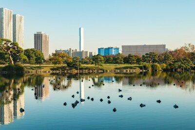 Obraz Zobacz Tokio miasta z parku