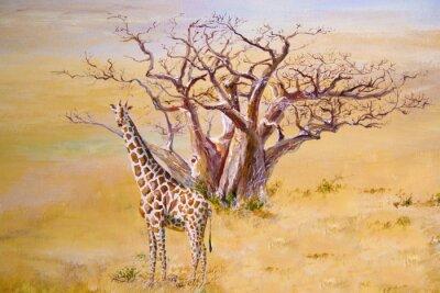 Obraz Żyrafa, Kenia