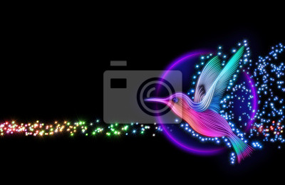 Plakat 3d colibri ptaków - koliber z gwiazdami