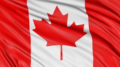 Plakat 3D Flaga Kanada
