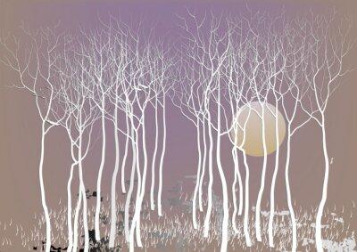 Plakat Abstrakt drzew leśnych z Pozostaw z księżycem porze nocnej wizji, białe drzewo