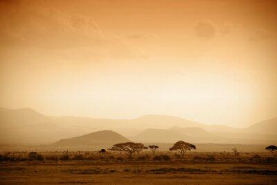Plakat Afrykańska Sawanna o wschodzie słońca