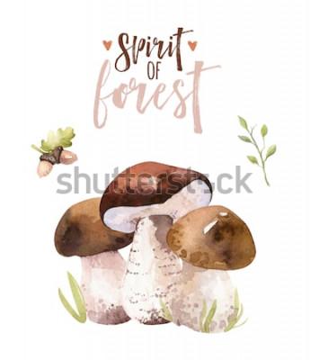 Plakat Akwarela czeski zestaw grzybów leśnych, lasy na białym tle plakat amanita ilustracja, muchomor, borowik, dekoracja borowik grzyb pomarańczowy.
