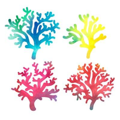 Plakat akwarela dekoracyjne ręcznie rysowane koral