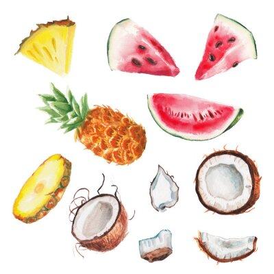 Plakat akwarela letnie owoce ustawić