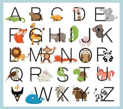 Plakat Alphabet animals