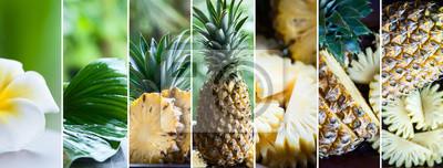 Plakat Ananas w naturalnych warunkach na pięknym tropikalnym tle. Egzotyczne, tropikalne owoce. Zdrowe jedzenie koncepcja, bio. Jedzenie organiczne. Kolaż