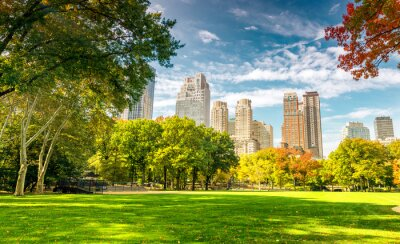Plakat Beautiful foliage colors of New York Central Park