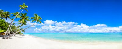 Plakat Beautiful tropical island with palm trees and beach panorama as background image