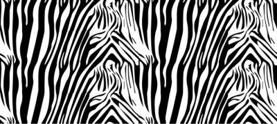 Plakat Bezszwowe wzór zebry