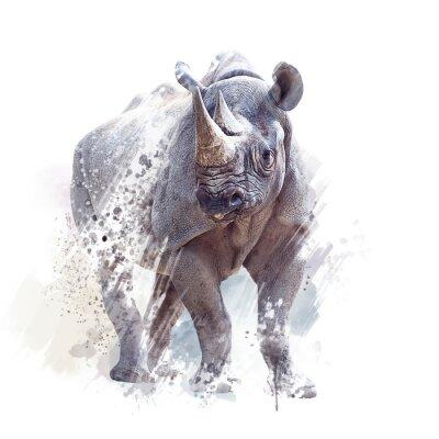 Plakat black rhinoceros watercolor on white background