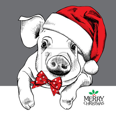 Boże Narodzenie plakat z portretem Obraz świni w kapelusz Santa iz łuku. ilustracji wektorowych.