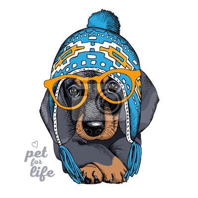 Boże Narodzenie plakat z portretem pies Jamnik w Chullo długo dzianiny kapelusz iw okularach. ilustracji wektorowych.